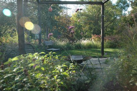 Jardin recup 4 vert.JPG