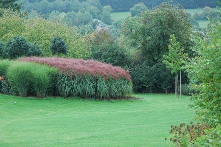 Jardin paysage à Ambly (Nassogne) (9).JPG